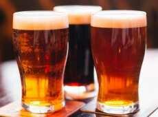 Сколько по времени из организма выветривается пиво
